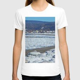 Frozen Beach T-shirt
