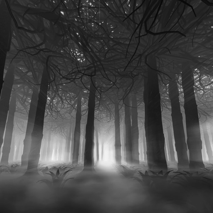 Soul of the Forest B&W Comforters
