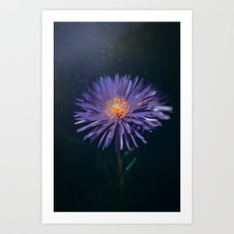 Purple Star Art Print