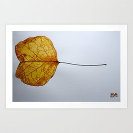 Cercis Siliquastrum - 7 Nov Art Print