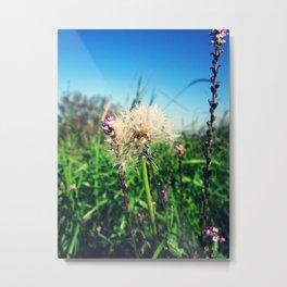Flowers (Valli di Comacchio) Metal Print