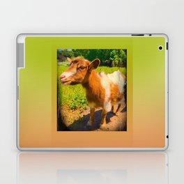 Nigerian Dwarf Goat Laptop & iPad Skin