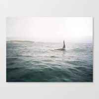orca Canvas Prints featuring Orca by Eric Kimberlin Bowley