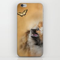 pomeranian iPhone & iPod Skins featuring Butterfly Dreams - Pomeranian by Jai Johnson