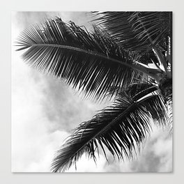 Vintage Classic Palm Tree Canvas Print