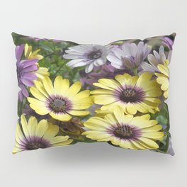 Yellow and Purple African Daisies Pillow Sham
