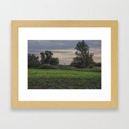 Summer landscae. Framed Art Print