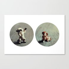 Cats & Dogs Canvas Print