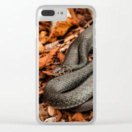 The Green Whip Snake Clear iPhone Case