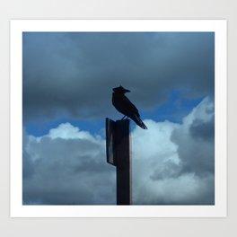 Raven on Blustery Day Art Print