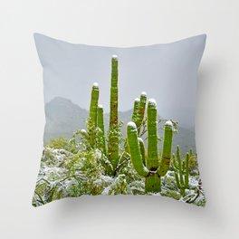 Snowy Sonoran Desert Delights Throw Pillow