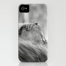 Lion Portrait iPhone (4, 4s) Slim Case