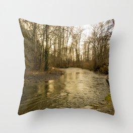 Rios de Oregon 2 Throw Pillow
