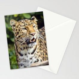 Amur Leopard Stationery Cards