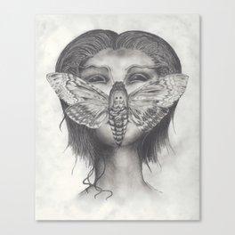 Cleopatra Brimstone Canvas Print