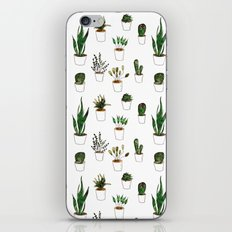 Green plants in white pots iPhone & iPod Skin