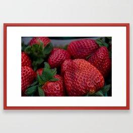 California Strawberries  Framed Art Print