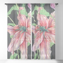 Hide the Lillies, Lily, Marker Art, Color Pencil, Floral Sheer Curtain