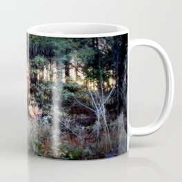 Sunset Forest : Where The Fairies Dwell Coffee Mug