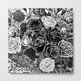 Beautiful Black&White Roses Metal Print