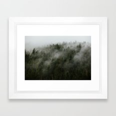 Pacific Northwest Foggy Forest Framed Art Print