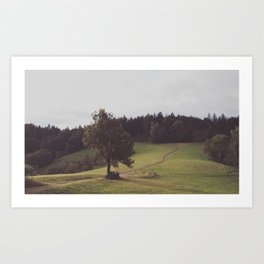 A path to the forest Art Print