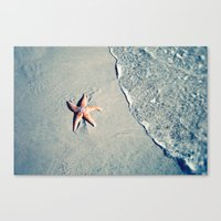 starfish Canvas Prints featuring Starfish  by Bree Madden