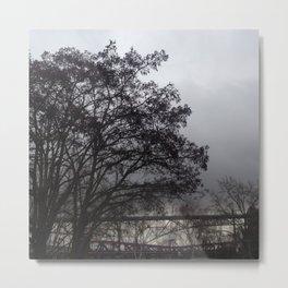 Two bridges winter trees Metal Print