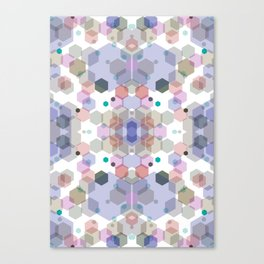 Hexagons Canvas Print
