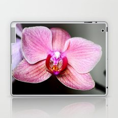 Orchid 2 Laptop & iPad Skin