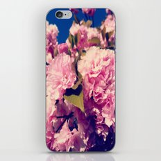 Cherry Blossoms  iPhone Skin