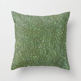 Silver green metal Throw Pillow