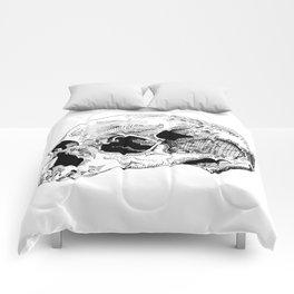 Dry Comforters