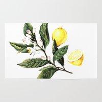 lemon Area & Throw Rugs featuring Lemon by Anna Yudina