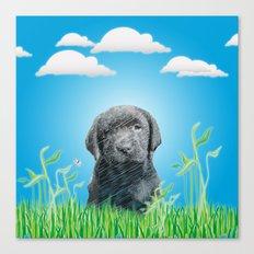 labrador puppy Canvas Print