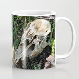 Deer Skull Coffee Mug
