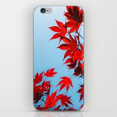 Red iPhone & iPod Skin
