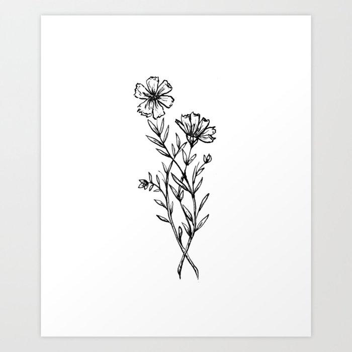 Cosmos Wildflower Kunstdrucke
