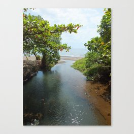 The Divide Canvas Print