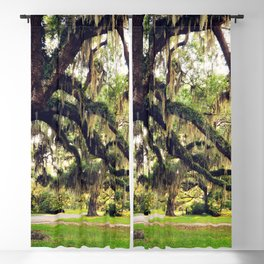 Live Oak Tree with Spanish Moss Blackout Curtain