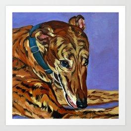 Emmitt the Whippet Dog Portrait Art Print