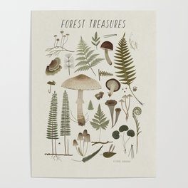 Forest treasures on light background Poster
