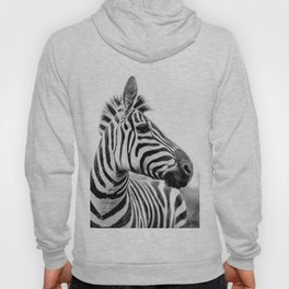 Totally Not A Horse Hoody