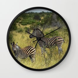 Zebra Mother And Child Wall Clock
