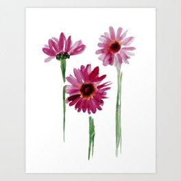 Rose chamomile watercolor Art Print