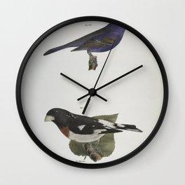 1330 146 The Blue Grosbeak (Coccoborus ceruleus) 147 The Rose breasted Grosbeak (Coccoborus ludovicianus)26 Wall Clock
