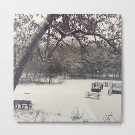 A Winter's Day Metal Print