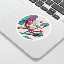 Flowering cactus IV Sticker