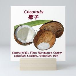 Coconut Nutrients Mini Art Print