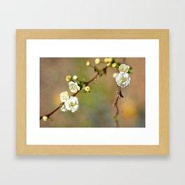Small Kindnesses Framed Art Print